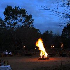 Отель Big Game Camp Yala Шри-Ланка, Катарагама - отзывы, цены и фото номеров - забронировать отель Big Game Camp Yala онлайн фото 11