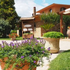 Отель Il Drago Azienda Turistica Rurale Италия, Айдоне - отзывы, цены и фото номеров - забронировать отель Il Drago Azienda Turistica Rurale онлайн фото 13