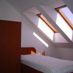 Отель U Sládků Чехия, Прага - отзывы, цены и фото номеров - забронировать отель U Sládků онлайн комната для гостей фото 4