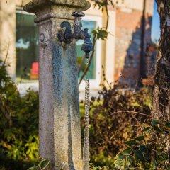 Отель Domus Rosarum Италия, Региональный парк Colli Euganei - отзывы, цены и фото номеров - забронировать отель Domus Rosarum онлайн фото 9