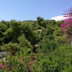 Отель Studios Marianna Греция, Эгина - отзывы, цены и фото номеров - забронировать отель Studios Marianna онлайн фото 2