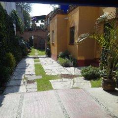 Отель Maria Del Alma Guest House Мексика, Мехико - отзывы, цены и фото номеров - забронировать отель Maria Del Alma Guest House онлайн фото 3