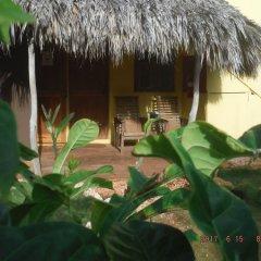 Отель Kudehya Guesthouse Ямайка, Треже-Бич - отзывы, цены и фото номеров - забронировать отель Kudehya Guesthouse онлайн фото 13