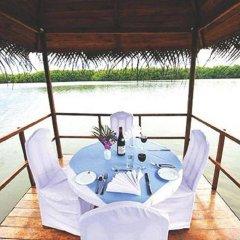 Отель Dalmanuta Gardens Шри-Ланка, Бентота - отзывы, цены и фото номеров - забронировать отель Dalmanuta Gardens онлайн приотельная территория фото 2