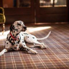 Отель GoGlasgow Urban Hotel by Compass Hospitality Великобритания, Глазго - отзывы, цены и фото номеров - забронировать отель GoGlasgow Urban Hotel by Compass Hospitality онлайн с домашними животными