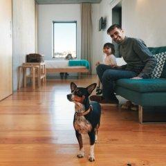 Апартаменты Oh Porto Apartments с домашними животными