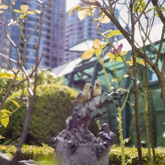 Отель Rosedale On Robson Suite Hotel Канада, Ванкувер - отзывы, цены и фото номеров - забронировать отель Rosedale On Robson Suite Hotel онлайн фото 12