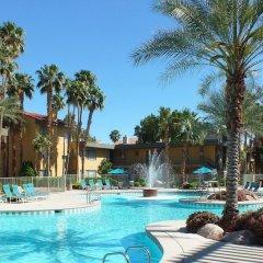 Отель Alexis Park All Suite Resort бассейн фото 2