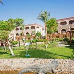 Отель Sentido Mamlouk Palace Resort детские мероприятия фото 2