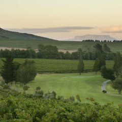 Отель Devonvale Golf & Wine Estate фото 3