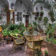 Отель Rincon de las Nieves фото 13