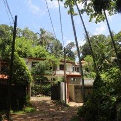 Отель Jungle Guest House Шри-Ланка, Галле - отзывы, цены и фото номеров - забронировать отель Jungle Guest House онлайн фото 4
