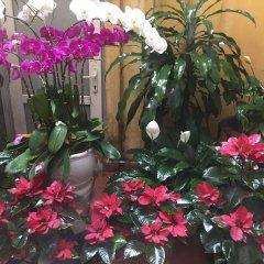 Отель 24 Kim Ma Ханой фото 9