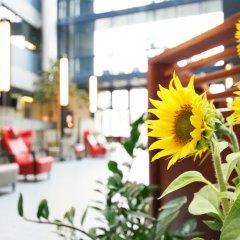 Airport Hotel Bonus Inn бассейн