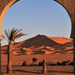 Отель Palmeras Y Dunas Марокко, Мерзуга - отзывы, цены и фото номеров - забронировать отель Palmeras Y Dunas онлайн пляж фото 2