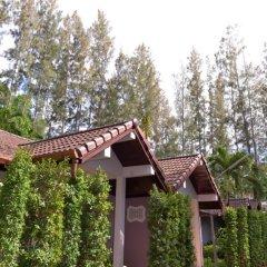Отель The Delight Pine Tree Village парковка фото 2