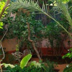 Отель Maison d'Hôtes Dar Farhana Марокко, Уарзазат - отзывы, цены и фото номеров - забронировать отель Maison d'Hôtes Dar Farhana онлайн фото 6