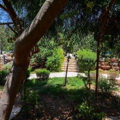 Отель Tur Sinai Organic Farm Resort Иерусалим фото 18