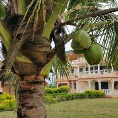 Отель The Beach house Гана, Шама - отзывы, цены и фото номеров - забронировать отель The Beach house онлайн фото 4
