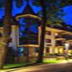 Отель Litwor Польша, Закопане - отзывы, цены и фото номеров - забронировать отель Litwor онлайн развлечения