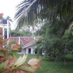 Отель Chitra Ayurveda Hotel Шри-Ланка, Бентота - отзывы, цены и фото номеров - забронировать отель Chitra Ayurveda Hotel онлайн фото 5