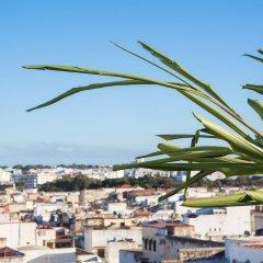 Отель Dar El Kebira Salam Марокко, Рабат - отзывы, цены и фото номеров - забронировать отель Dar El Kebira Salam онлайн пляж