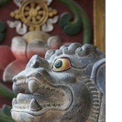 Отель Tibet International Непал, Катманду - отзывы, цены и фото номеров - забронировать отель Tibet International онлайн в номере