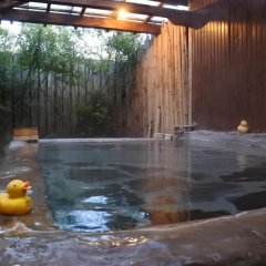 Отель Secret Base Tokinokakera Хидзи бассейн