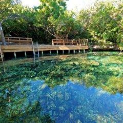 Отель Tortuga Bay Доминикана, Пунта Кана - отзывы, цены и фото номеров - забронировать отель Tortuga Bay онлайн приотельная территория фото 2