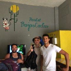 Baja's Cactus Hostel Кабо-Сан-Лукас сауна