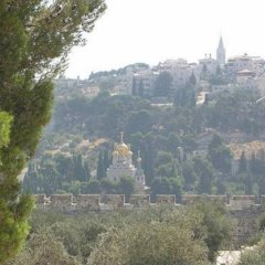Jerusalem Panorama Hotel Израиль, Иерусалим - 5 отзывов об отеле, цены и фото номеров - забронировать отель Jerusalem Panorama Hotel онлайн приотельная территория