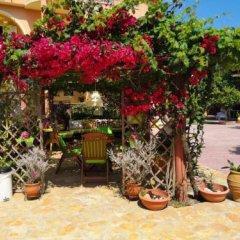 Отель Babis Studios Греция, Аргасио - отзывы, цены и фото номеров - забронировать отель Babis Studios онлайн фото 4