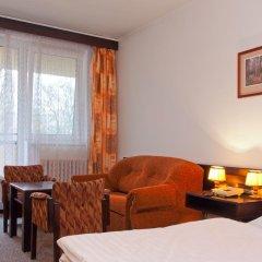 Hotel Merkur - Jablonec Nad Nisou Яблонец-над-Нисой комната для гостей фото 2