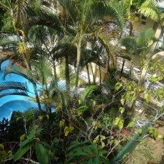 Отель Suva Motor Inn Фиджи, Вити-Леву - отзывы, цены и фото номеров - забронировать отель Suva Motor Inn онлайн фото 4