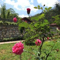 Отель Sapa Garden Bed and Breakfast Вьетнам, Шапа - отзывы, цены и фото номеров - забронировать отель Sapa Garden Bed and Breakfast онлайн детские мероприятия