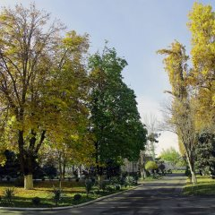 Отель Residence Park Hotel Узбекистан, Ташкент - отзывы, цены и фото номеров - забронировать отель Residence Park Hotel онлайн фото 3