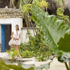 Отель Taj Coral Reef Resort & Spa Maldives Мальдивы, Северный атолл Мале - отзывы, цены и фото номеров - забронировать отель Taj Coral Reef Resort & Spa Maldives онлайн фото 7