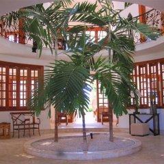 Отель Tortuga D-2 балкон