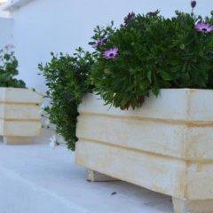 Отель Koukounari 2 Rooms Греция, Агистри - отзывы, цены и фото номеров - забронировать отель Koukounari 2 Rooms онлайн фото 8