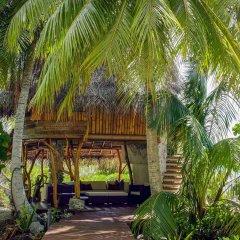 Отель Ninamu Resort - All Inclusive фото 4