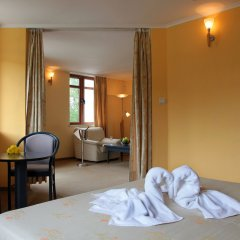 Отель Glazne Hotel Болгария, Банско - отзывы, цены и фото номеров - забронировать отель Glazne Hotel онлайн комната для гостей фото 3