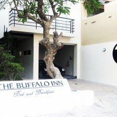 Отель Buffalo Inn Вьетнам, Вунгтау - отзывы, цены и фото номеров - забронировать отель Buffalo Inn онлайн
