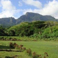 Отель Nalesutale Village Lodges Фиджи, Вити-Леву - отзывы, цены и фото номеров - забронировать отель Nalesutale Village Lodges онлайн фото 3