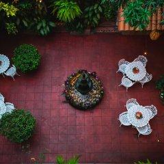 Отель Posada De Roger Пуэрто-Вальярта фото 13
