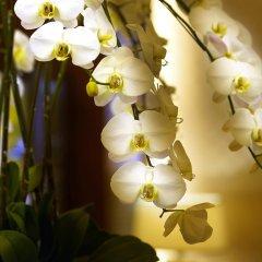 Отель City Lake Hotel Taipei Тайвань, Тайбэй - отзывы, цены и фото номеров - забронировать отель City Lake Hotel Taipei онлайн спа