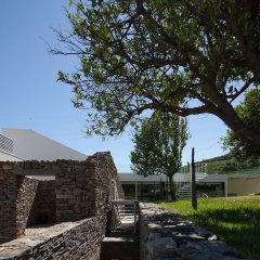 Отель Quinta De Casaldronho Wine Hotel Португалия, Ламего - отзывы, цены и фото номеров - забронировать отель Quinta De Casaldronho Wine Hotel онлайн фото 12