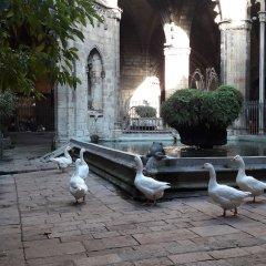 Отель B&b Vistamar Holidays - Adults Only Барселона фото 4
