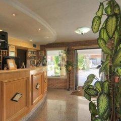 Отель Aurora Garden Hotel Италия, Рим - 4 отзыва об отеле, цены и фото номеров - забронировать отель Aurora Garden Hotel онлайн интерьер отеля фото 3