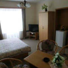 Отель Pension Panorama Карловы Вары комната для гостей фото 5
