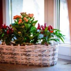 Отель Renesans Польша, Закопане - отзывы, цены и фото номеров - забронировать отель Renesans онлайн интерьер отеля фото 3